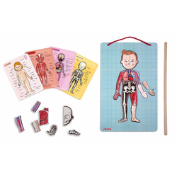 "J05491 Карточки с магнитными пазлами ""Части тела"", фото , изображение 3"