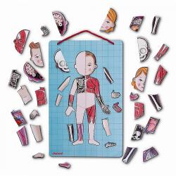 Карточки Janod с магнитными пазлами «Части тела», фото
