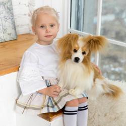 3993 Собака породы папийон, 41 см, фото , изображение 12