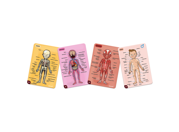 Карточки Janod с магнитными пазлами «Части тела», фото , изображение 9