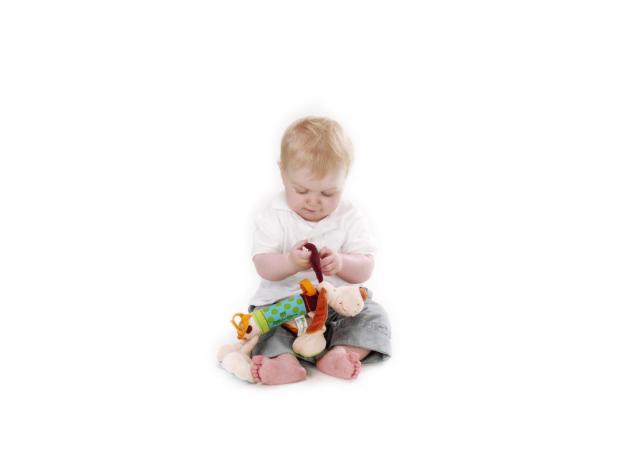 Развивающая игрушка Lilliputiens «Собачка Джеф», фото , изображение 5