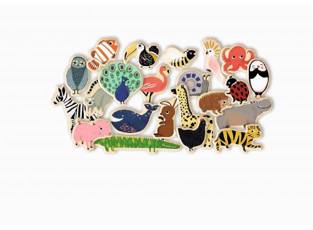 DJECO Магнитная игра Животные, фото , изображение 2