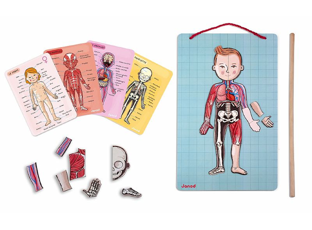 Карточки Janod с магнитными пазлами «Части тела», фото , изображение 3