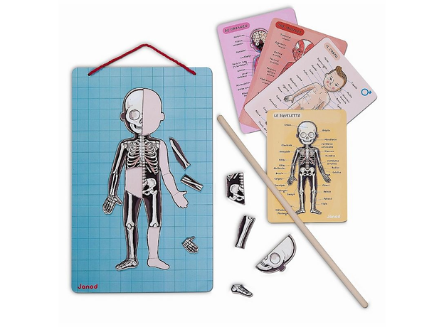Карточки с магнитными пазлами Janod «Части тела», фото , изображение 7