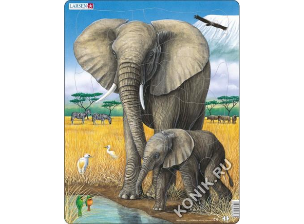 LARSEN D8-Слон D8, фото