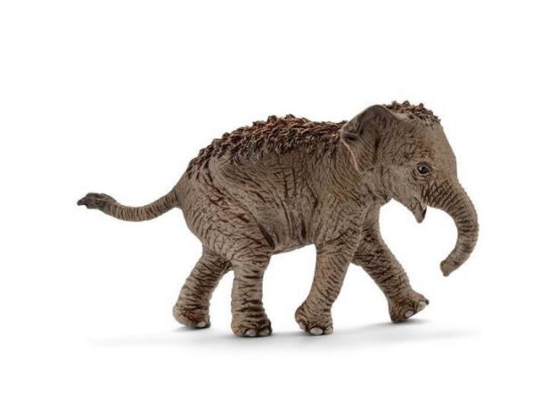 SCHLEICH Азиатский слон, детеныш 14755, фото
