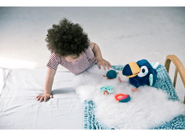 Развивающая игрушка Lilliputiens «Тукан Пабло», фото