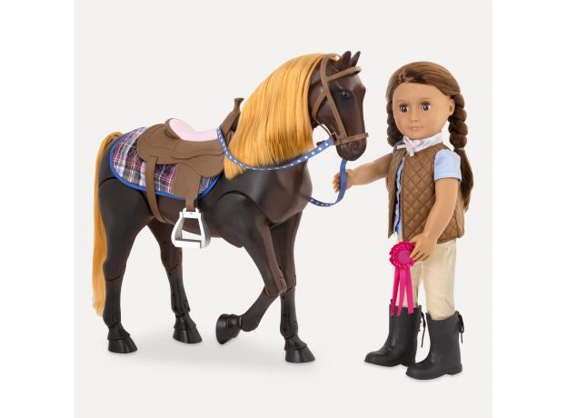 """Лошадь """"Американская Чистокровная"""", фото , изображение 6"""