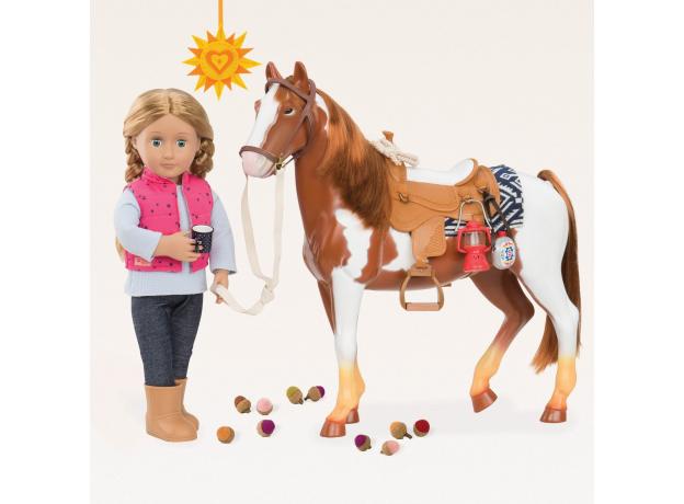 """Лошадь породы """"Американская верховая"""", фото , изображение 3"""