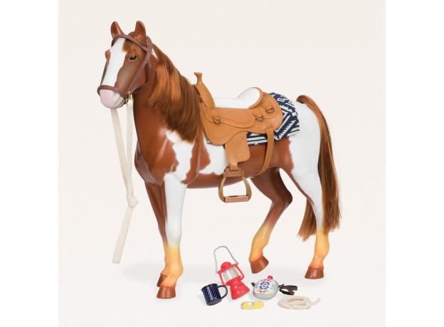 """Лошадь породы """"Американская верховая"""", фото , изображение 2"""