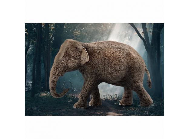 SCHLEICH Азиатский слон, самка 14753, фото , изображение 3