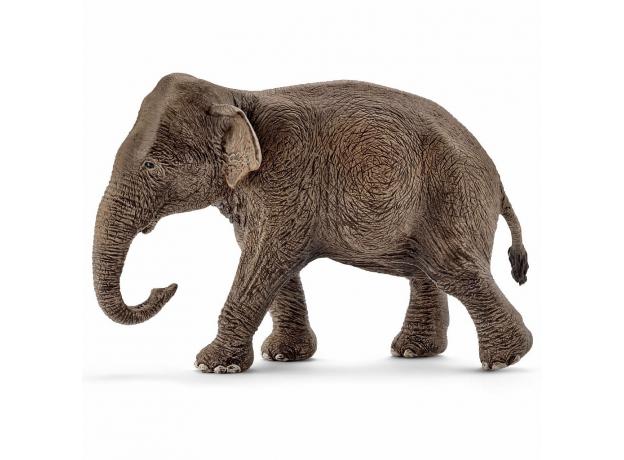 SCHLEICH Азиатский слон, самка 14753, фото , изображение 4