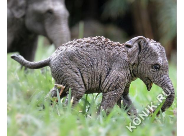 SCHLEICH Азиатский слон, детеныш 14755, фото , изображение 2