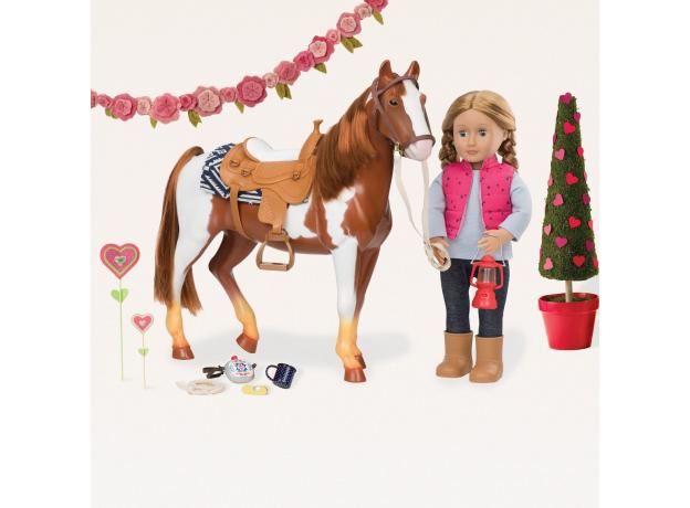 """Лошадь породы """"Американская верховая"""", фото , изображение 6"""