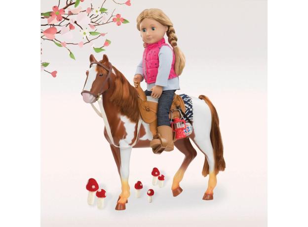 """Лошадь породы """"Американская верховая"""", фото , изображение 5"""